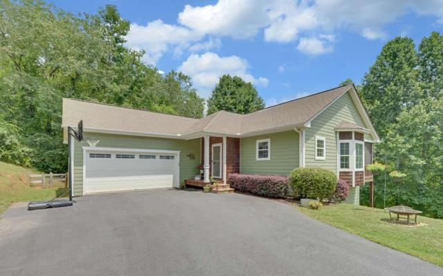 142 Murray Hill Terrace, Hayesville, NC 28904 (MLS #280719) :: RE/MAX Town & Country
