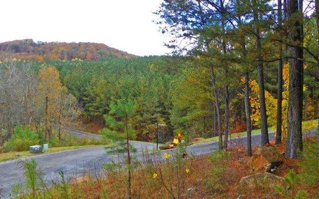 LOT 1 Black Bear Ridge, Ellijay, GA 30540 (MLS #280728) :: RE/MAX Town & Country
