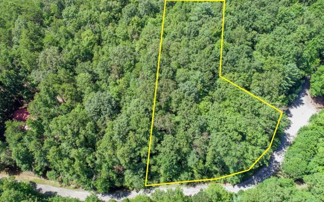 LOT 5 Natures Way, Blue Ridge, GA 30513 (MLS #280854) :: RE/MAX Town & Country