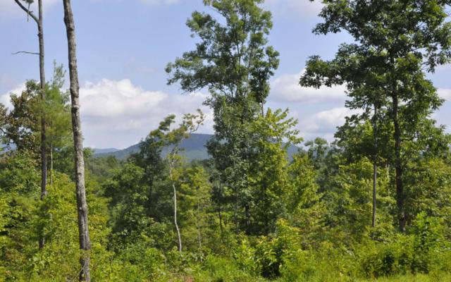 Murphy, NC 28906 :: RE/MAX Town & Country