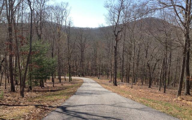 LOT15 Mystic Ridge, Blairsville, GA 30512 (MLS #280982) :: RE/MAX Town & Country