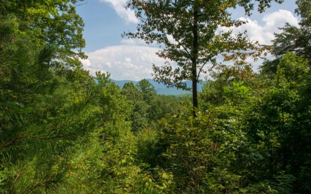 LT88 Goldsprings Rd, Cherry Log, GA 30513 (MLS #281142) :: RE/MAX Town & Country