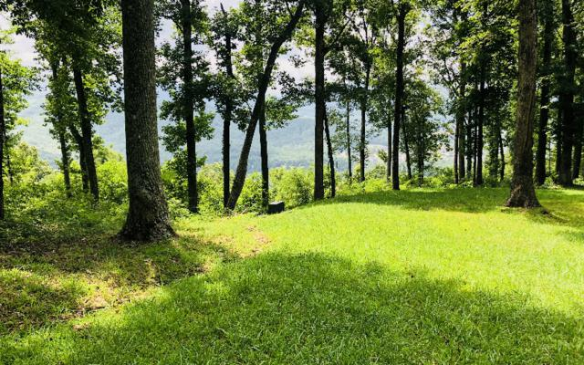 LT 33 Rocky Knob Estates, Young Harris, GA 30582 (MLS #281332) :: RE/MAX Town & Country