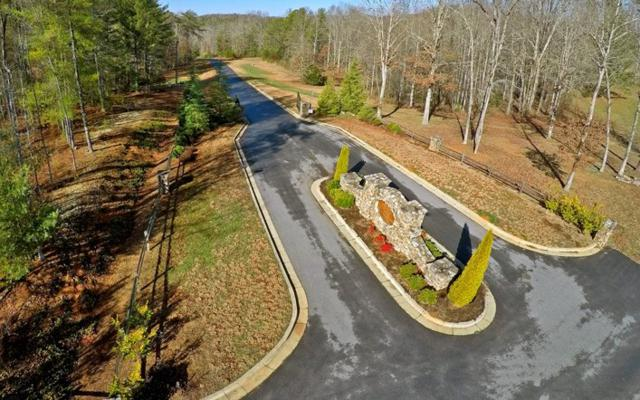 LOT52 Gold Creek, Blairsville, GA 30512 (MLS #281506) :: RE/MAX Town & Country
