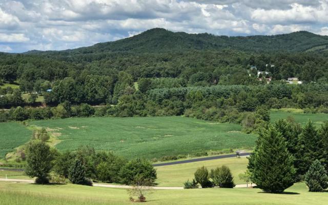 LT 13 Warne Estates, Warne, NC 28909 (MLS #281854) :: RE/MAX Town & Country