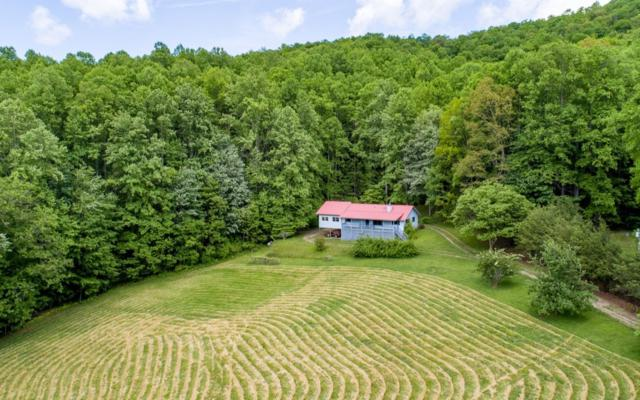 Topton, NC 28781 :: RE/MAX Town & Country