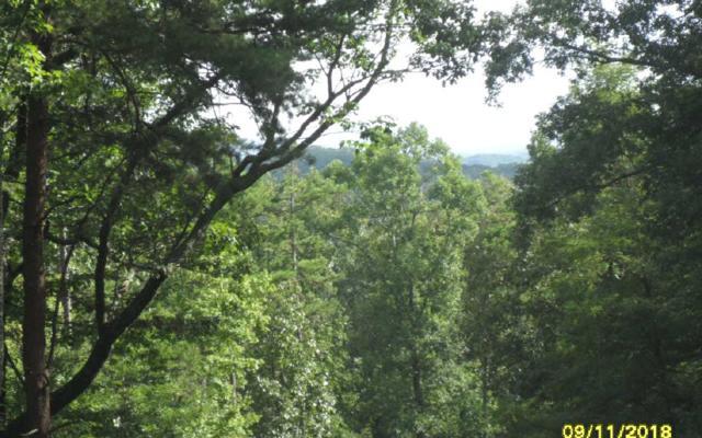 LT 34 Saw Blade Lane, Ellijay, GA 30540 (MLS #282000) :: RE/MAX Town & Country