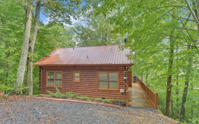 40 Holly Hollow Road, Cherry Log, GA 30522 (MLS #282040) :: RE/MAX Town & Country