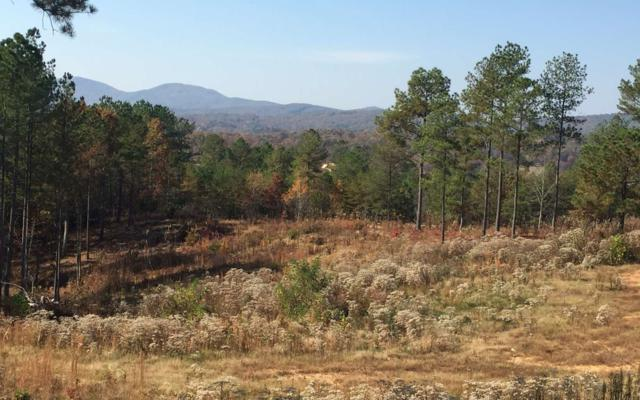277 Thirteen Hundred, Blairsville, GA 30512 (MLS #282055) :: RE/MAX Town & Country