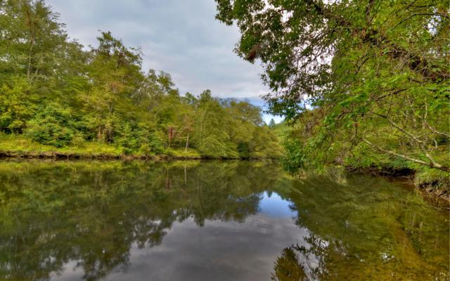 74 Riverwalk Toccoa, Mineral Bluff, GA 30559 (MLS #282064) :: RE/MAX Town & Country