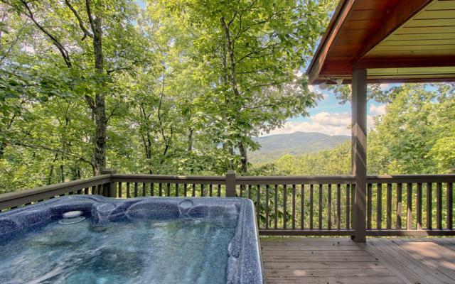 404 Cohutta Mountain, Cherry Log, GA 30522 (MLS #282086) :: RE/MAX Town & Country