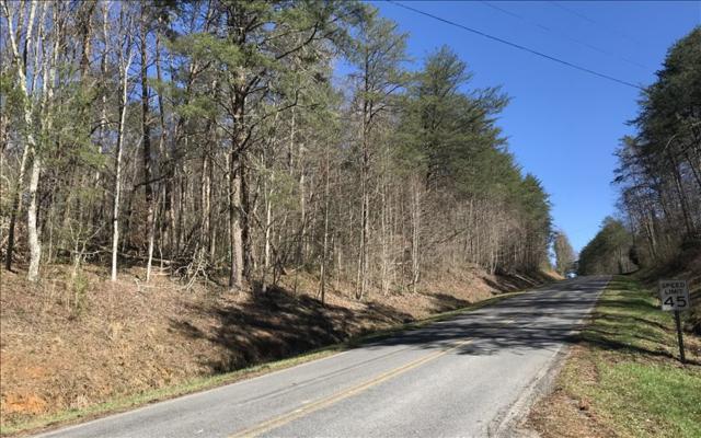 TR 1 Big Creek Road, Ellijay, GA 30536 (MLS #282093) :: RE/MAX Town & Country