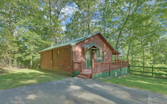 862 Mountain Oak Drive, Ellijay, GA 30536 (MLS #282097) :: RE/MAX Town & Country