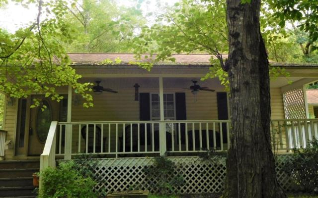 517 Blackberry Drive, Mineral Bluff, GA 30559 (MLS #282111) :: RE/MAX Town & Country