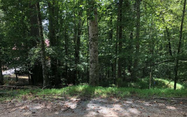0 Hillsdale Dr, Ellijay, GA 30540 (MLS #282222) :: RE/MAX Town & Country