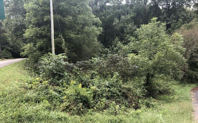 935 Billy Lane, Hiawassee, GA 30546 (MLS #282233) :: Path & Post Real Estate