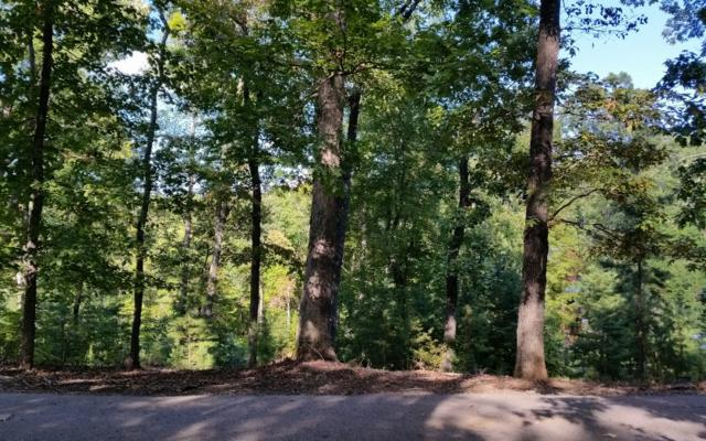 LOT26 Rooks Rd, Mineral Bluff, GA 30559 (MLS #282289) :: RE/MAX Town & Country