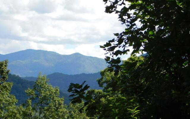 LT 5J Ashe Branch View, Hayesville, NC 28904 (MLS #282301) :: RE/MAX Town & Country