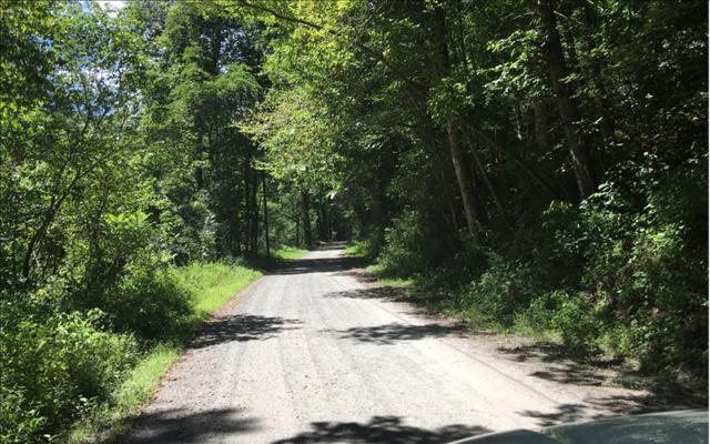 4 AC Big Creek Rd, Cherry Log, GA 30522 (MLS #282302) :: RE/MAX Town & Country