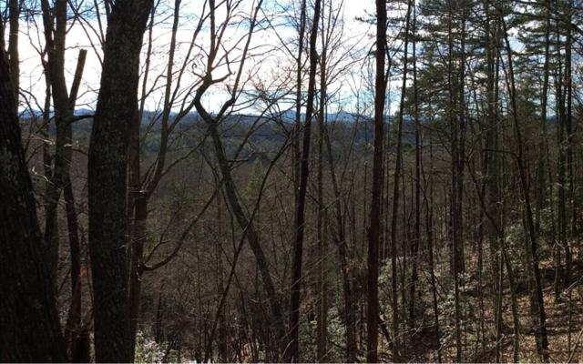 LOT17 Whippoorwill Walk, Mineral Bluff, GA 30559 (MLS #282359) :: RE/MAX Town & Country