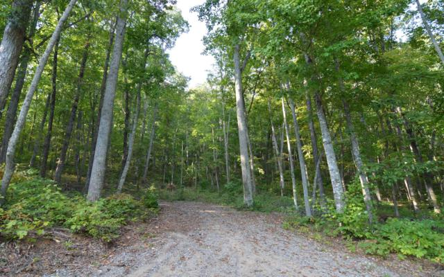 LOT 5 Chatuge Heights, Hayesville, NC 28904 (MLS #282640) :: RE/MAX Town & Country