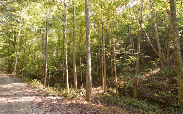 LT 12 Ansley Lane, Blairsville, GA 30512 (MLS #282646) :: RE/MAX Town & Country