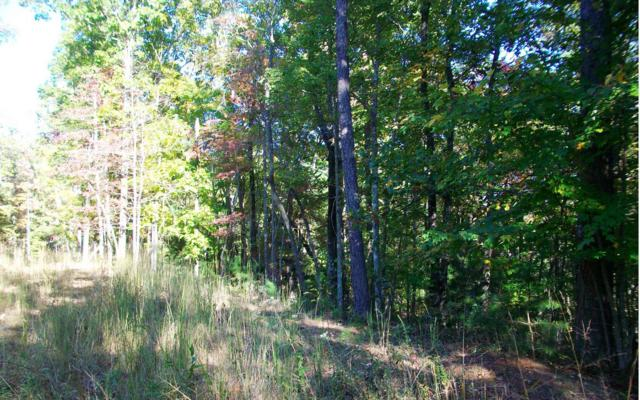 LT 24 Sunrise Drive, Murphy, NC 28906 (MLS #282654) :: Path & Post Real Estate