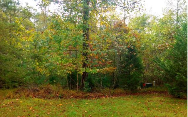 Kingfisher Lane Lt9, Blairsville, GA 30512 (MLS #282757) :: RE/MAX Town & Country
