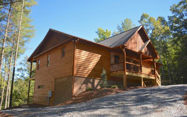 91 Oasis Drive, Epworth, GA 30541 (MLS #282804) :: RE/MAX Town & Country