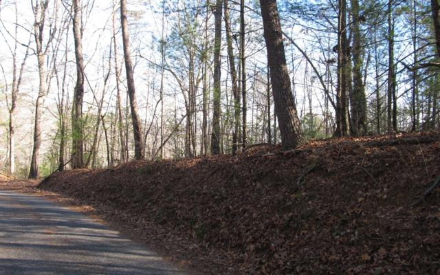 13 Spiva Cove Mtn Trail, Blairsville, GA 30512 (MLS #282834) :: RE/MAX Town & Country