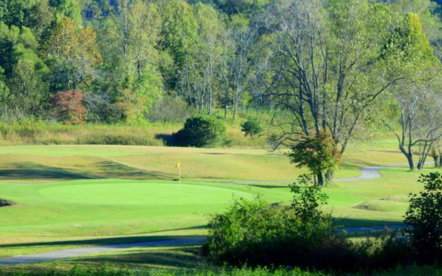LT 58 Owen Glen, Blairsville, GA 30512 (MLS #282996) :: RE/MAX Town & Country