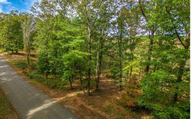 29&30 Ivy Ridge Estates, Blue Ridge, GA 30513 (MLS #283007) :: RE/MAX Town & Country