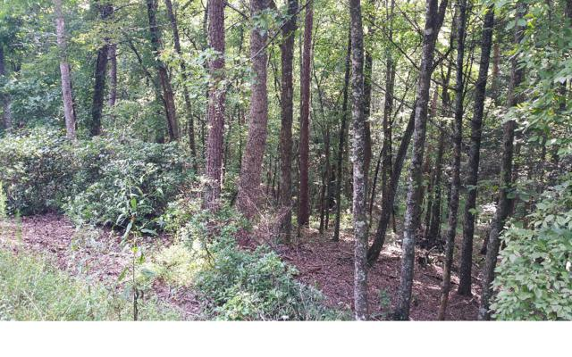 L493 Chicasaw Drive, Ellijay, GA 30540 (MLS #283170) :: RE/MAX Town & Country