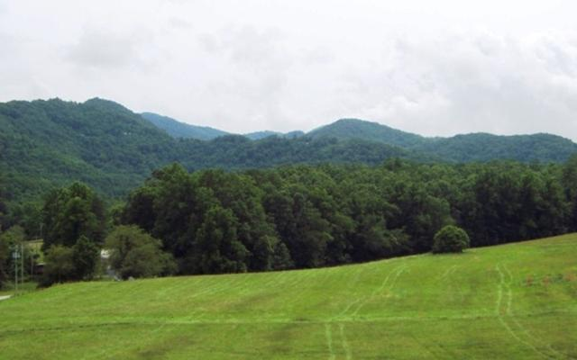 18 Carolie View, Hayesville, NC 28904 (MLS #283241) :: RE/MAX Town & Country