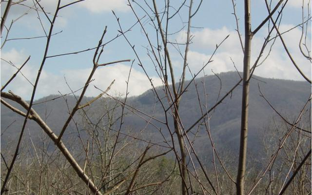 Bell Creek Orchard, Hayesville, NC 28904 (MLS #283243) :: Path & Post Real Estate