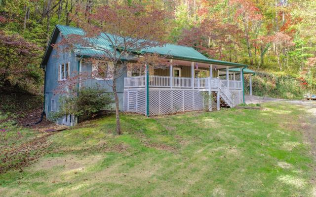 496 John Waters Rd, Cherry Log, GA 30522 (MLS #283305) :: RE/MAX Town & Country