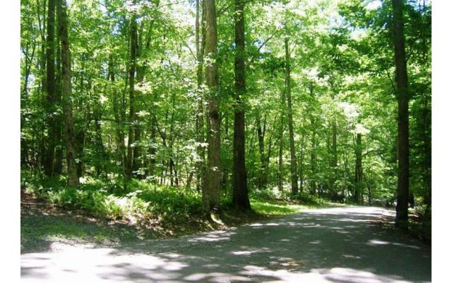 LT 58 Riverwalk On Toccoa, Mineral Bluff, GA 30559 (MLS #283351) :: RE/MAX Town & Country