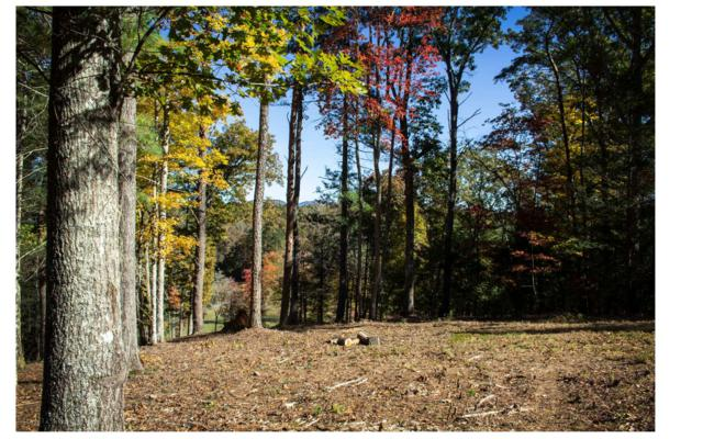 00 Nature Valley, Murphy, NC 28906 (MLS #283383) :: RE/MAX Town & Country