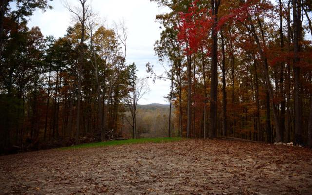 2 Highland Forest, Morganton, GA 30560 (MLS #283424) :: RE/MAX Town & Country