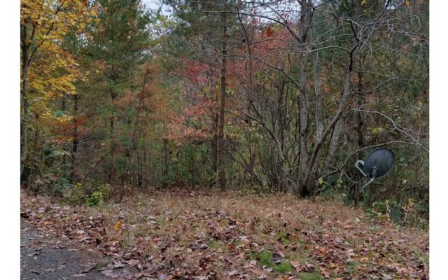LOT 8 Wild Turkey Ln, Hayesville, NC 28904 (MLS #283437) :: RE/MAX Town & Country
