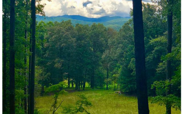 2A Highland Forest, Morganton, GA 30560 (MLS #283445) :: RE/MAX Town & Country