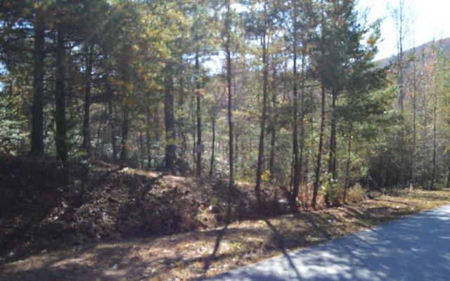 Laurel Brooke Lot 59, Blairsville, GA 30512 (MLS #283479) :: RE/MAX Town & Country