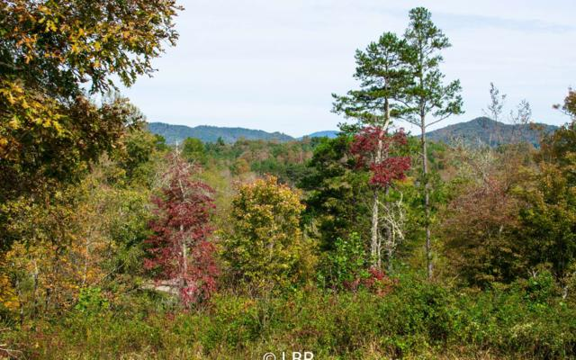 LT 22 Brookhaven Drive, Young Harris, GA 30582 (MLS #283504) :: RE/MAX Town & Country