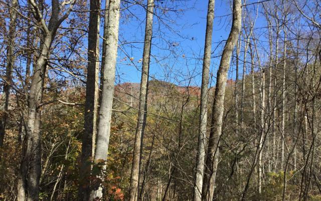 2200 Deer Run, Hiawassee, GA 30546 (MLS #283509) :: Path & Post Real Estate