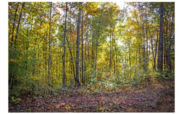 LT 14 Ridgewood Drive, Murphy, NC 28906 (MLS #283615) :: RE/MAX Town & Country