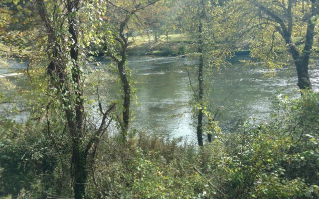 Butterfly Trace, Blue Ridge, GA 30513 (MLS #283696) :: Path & Post Real Estate