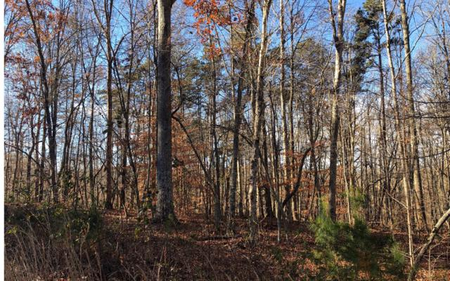 133 Owen Glen, Blairsville, GA 30512 (MLS #284046) :: RE/MAX Town & Country