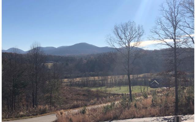 168 Owen Glen, Blairsville, GA 30512 (MLS #284047) :: RE/MAX Town & Country