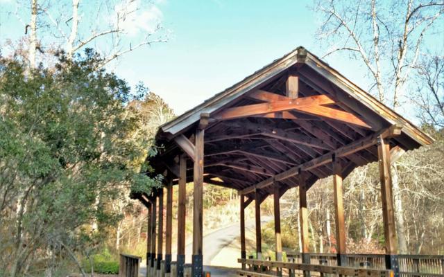 Lower Creek Tr # 41, Ellijay, GA 30540 (MLS #284098) :: RE/MAX Town & Country