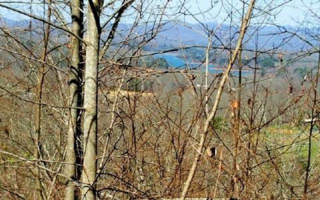 LT 81 Dan Knob, Hayesville, NC 28904 (MLS #284169) :: RE/MAX Town & Country